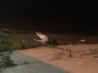 В Киеве из Днепра достали тело женщины