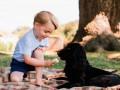 Кормящий пса мороженым принц Джордж рассердил защитников животных
