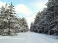 Украину накроют снегопады: появилась карта