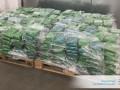 В Бельгии задержаны главари крупного наркокартеля