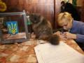 В закон о языках внесут правки: бюллетени на выборах будут печатать только на украинском