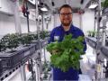 В Антарктиде впервые собрали урожай овощей