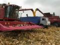 В Украине собрали рекордный урожай за всю историю независимости