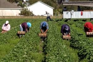 Кабмин будет повышать уровень зарплат в сельской местности