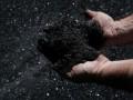 СМИ: Северная Корея торгует углем в обход санкций