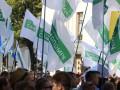 Самопомич показала доходы за год - 100 млн гривен