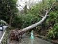 В Японии отменили более 100 авиарейсов из-за супертайфуна