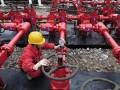 Янукович сообщил об амбициях соорудить с китайцами четыре завода для синтетического газа