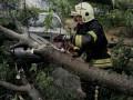 Под Киевом из-за непогоды один человек погиб, двое ранены