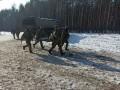 Стало известно имя военного, который погиб на Донбассе