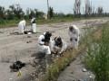 ВСУ: 85 тел погибших в Донбассе не идентифицированы