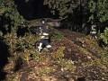 В Ивано-Франковске непогода снесла деревья, крыши и повредила машины
