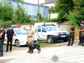 Полиция ожидает в Умани сорок тысяч хасидов