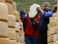 Роспотребнадзор решает вопрос о допуске еще двух украинских сырзаводов на рынок РФ
