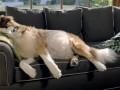 ТОП-5 реклам, борющихся за Emmy 2012 (ВИДЕО)