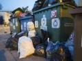 В Швейцарии мужчину отправят в тюрьму за неправильный выброс мусора