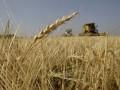 Рада отсрочила земельную реформу