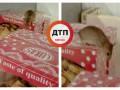 В киевском супермаркете по продуктам бегала мышь – СМИ