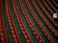 Власти Молдовы намерены запретить рекламу в кинотеатрах