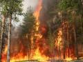 Азаров сообщил, что пожар в Херсонской области локализован