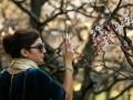 В Киеве 8 марта зафиксировали температурный рекорд