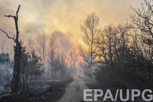 Пожар в Чернобыльской зоне отчуждения
