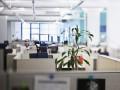 Время арендаторов: владельцы офисов пошли на невиданные уступки