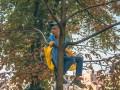 Аншлаг на Крещатике: как киевляне смотрели парад
