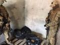 В Одессе изьяли 355 кг