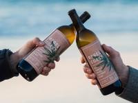 В США изобрели безалкогольное вино с каннабисом