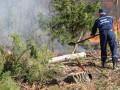 ГСЧС: Пожар в зоне отчуждения контролируется, но не потушен