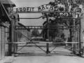 Следователи вышли на след 50 бывших надзирателей Освенцима