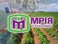 Бывшие собственники Мрии завысили стоимость активов в пять раз