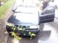 Во Львове дерево упало на легковой автомобиль и травмировало пассажирку
