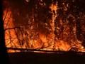 ГСЧС остановила распространение пожара возле ЧАЭС