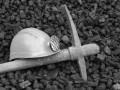 На шахте в Кривом Роге погиб горняк