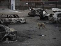 СБУ опубликовала переговоры боевиков после обстрела Мариуполя