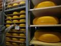 Россия официально разрешила поставки сыра трем украинским заводам