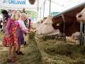 Украина договорилась об экспорте молока в Саудовскую Аравию