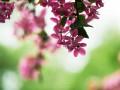 Синоптики рассказали, ждать ли весну 3 апреля