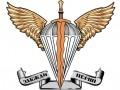 Утвержден флаг и эмблема новых Десантно-штурмовых войск