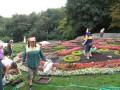 В Киеве коммунальщики присвоили миллион гривен, выделенных на озеленение города