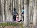 В Китае изолировали больше 100 млн человек из-за вспышки коронавируса