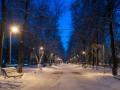 Где будет снег: Синоптики рассказали о погоде в Украине на Рождество