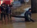 Эвакуировали женщин и детей: ливни подтопили Прикарпатье