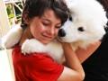 Собаки-обнимаки: лучшие фото объятий с любимцами