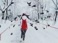 В Киеве проведут массовую реконструкцию парков