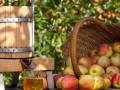 Украина увеличила экспорт соков в три раза