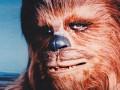 Чубака едва не подрался с горрилой в киевском зоопарке (видео)