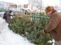 На ликвидацию елок в Киеве потратят 300 тыс. грн